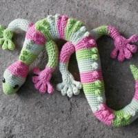 Gorgeous gecko!
