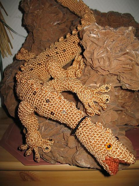 gold gecko