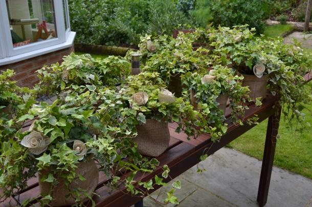 Preparation in the garden