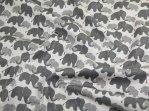 grey elephants