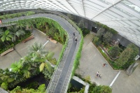 Within one of the temperate domes of the Gardens by the Bay, Singapore